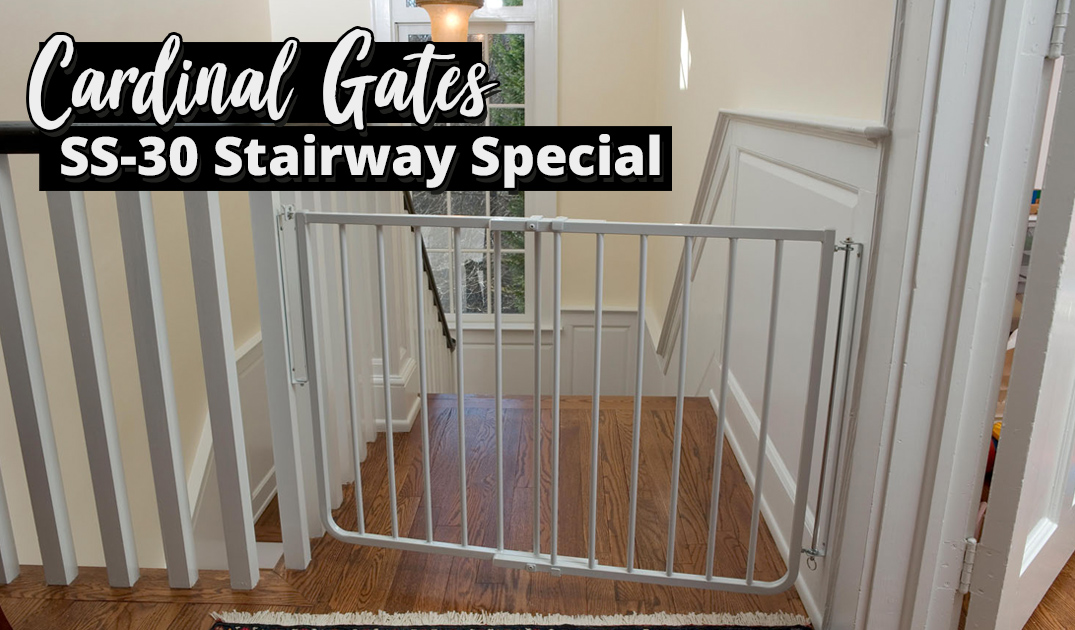 The Best Baby Gate You Need To Keep Your Child Safe Useful Kid Safety Tips You Need To Know